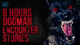 DOGMAN AND WEREWOLVES - 6 HOURS OF HORROR STORIES OF DOGMAN ENCOUNTERS NEW YEARS EVE SPECIAL 2021